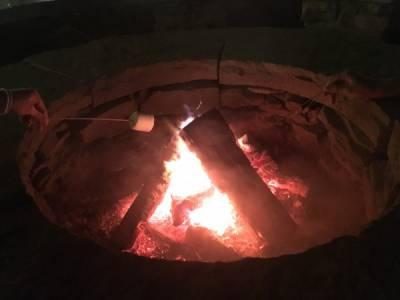 焚き火で焼きマシュマロ 200円、焼きチーズ 300円